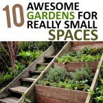 10 Awesome Gardens for Really Small Spaces