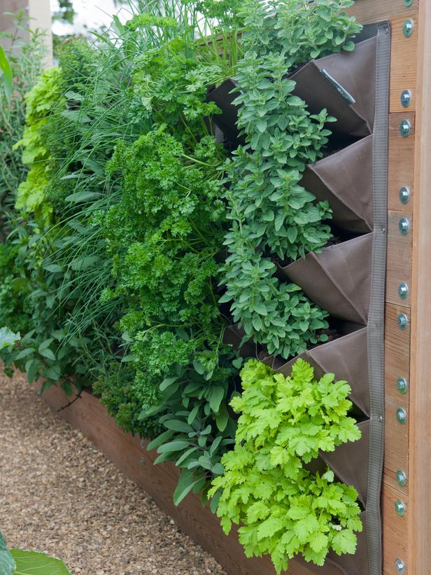Small herb garden ideas car interior design Garden ideas for small spaces