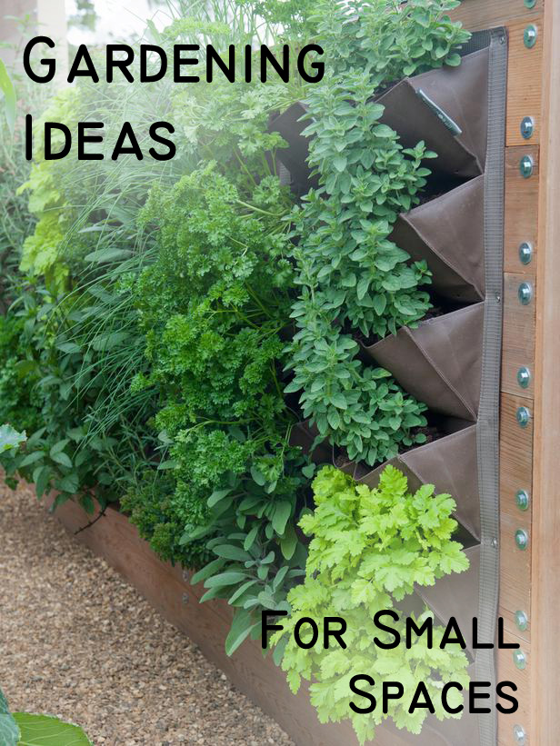 Gardening ideas for small spaces photograph gardening idea Garden ideas for small spaces