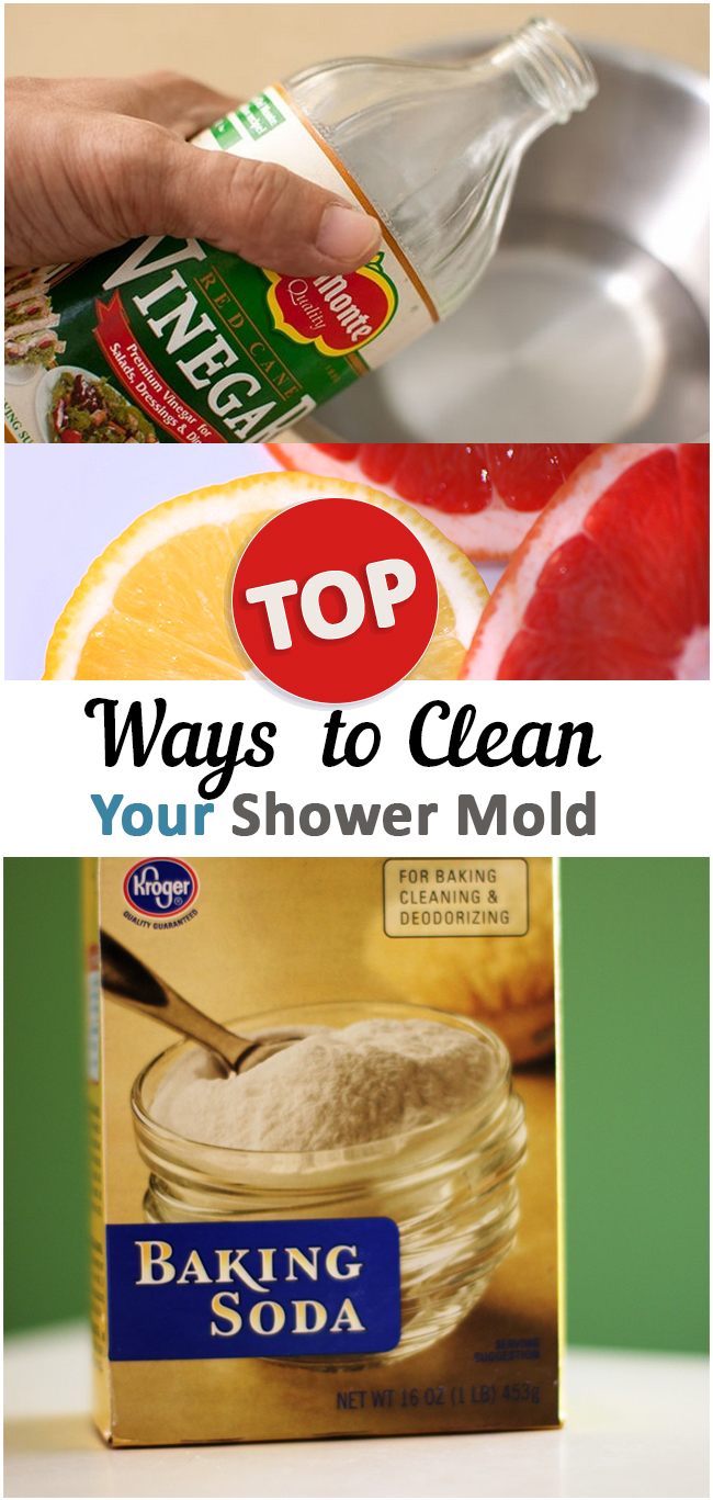 6 hacks to beat shower mold permanently 26519