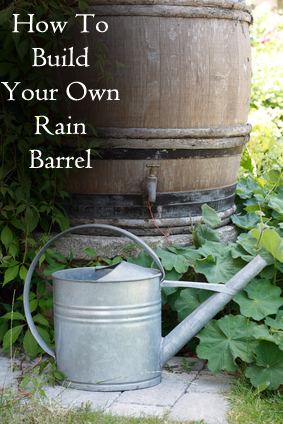 How To Build Your Own Rain Barre