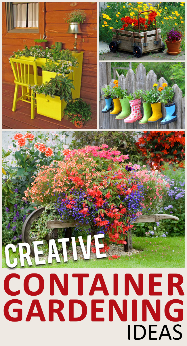 9 container alternatives for potted plants page 7 of 10 for Outdoor decorating with potted plants