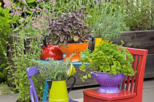 Colorful kitchen items like colanders make for fun alternative planters