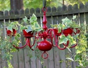 Old chandelier painted red and planted with ivy hanging in a garden.