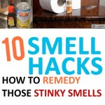 Smell hacks, stink house remedies, DIY stinky house remedies, popular pin, cleaning, cleaning hacks, clean air, clean everything.