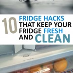 10 Fridge Hacks that Keep Your Fridge Fresh and Clean (1)