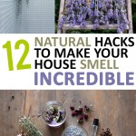 DIY, DIY home, home décor, popular pin home décor hacks, DIY home décor, DIY tutorials, home improvement, curb appeal, home DIY, home projects, DIY home tutorials