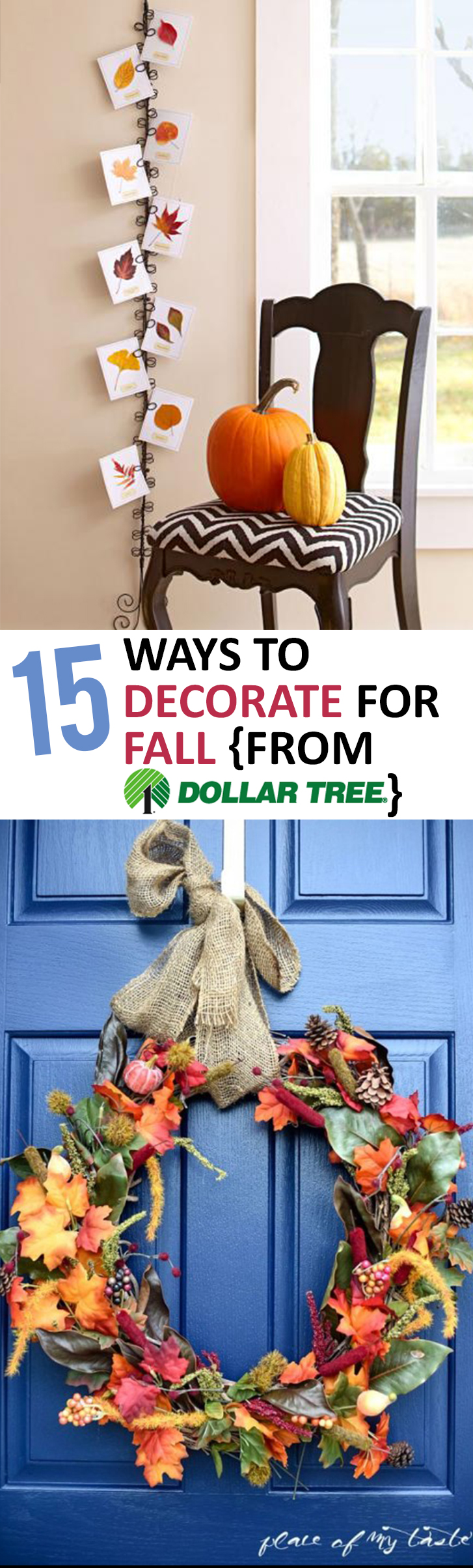 15 Ways to Decorate for Fall {From Dollar Tree}  Sunlit - Cheap Ways To Decorate For Halloween