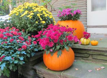 10-no-carve-ways-to-decorate-pumpkins5