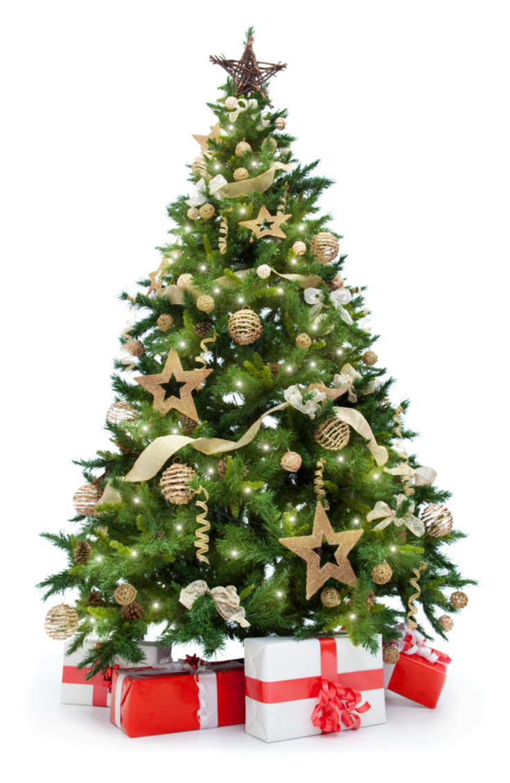Here are some great ways to decorate a Christmas tree. This tree is inspired by Scandinavian design. Gold and green is a perennial favorite in Christmas tree design, and with this example it is easy to see why.