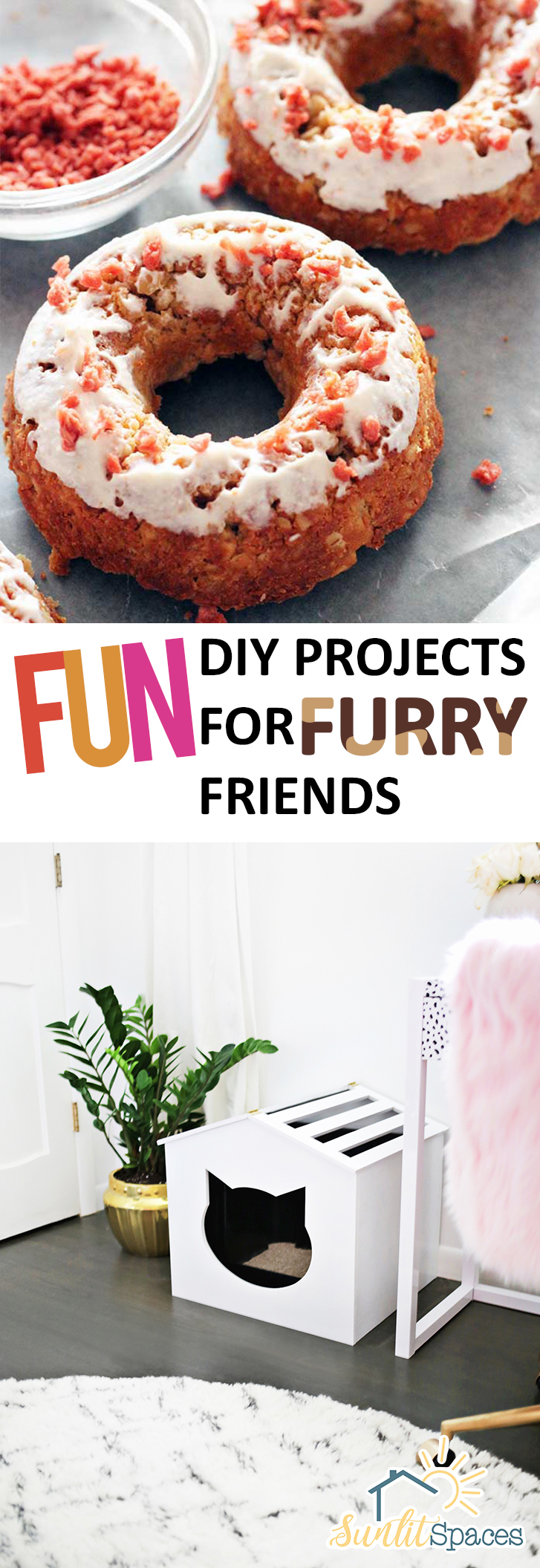 Fun diy projects for furry friends for Diy projects to do with friends
