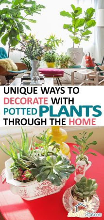 Unique Ways to Decorate With Potted Plants Through the Home| Potted Plants, Potted Plant Ideas, Potted Plants Patio, Potted Plants Outdoor, Home Decor, Home Decor DIY