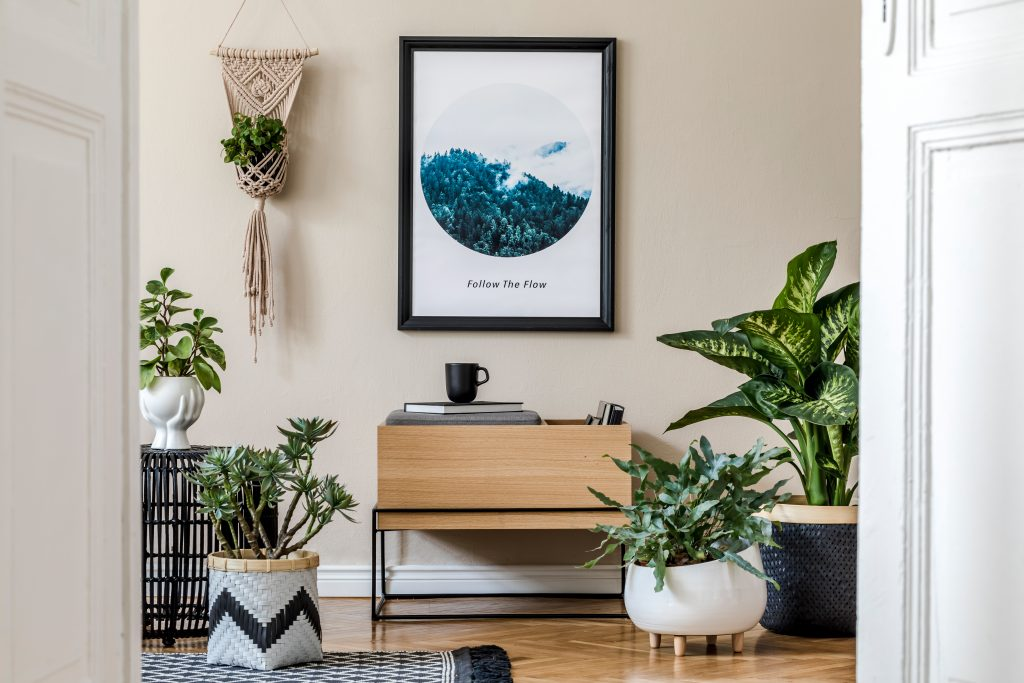 Unique Ways to Decorate With Potted Plants Through the Home| Potted Plants, Potted Plant Ideas, Potted Plants Patio, Potted Plants Outdoor, Home Decor, Home Decor DIY, How To Decorate With Potted Plants
