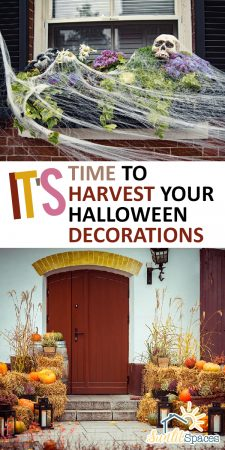 Harvest Your Halloween Decorations | Harvesting | Halloweeen | Halloween Decorations | Fall Decorations | Fall Front Porch Decorations | Halloween Front Porch Decorations