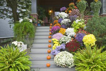 Fall Porch Decor   DIY Fall Porch Decor   Fall Porch Decor Ideas   Fall Porch Decorations   Fall Porch   Outdoor Fall Decor