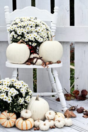 Fall Porch Decor | DIY Fall Porch Decor | Fall Porch Decor Ideas | Fall Porch Decorations | Fall Porch | Outdoor Fall Decor