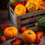 Fall Porch and Home Decor