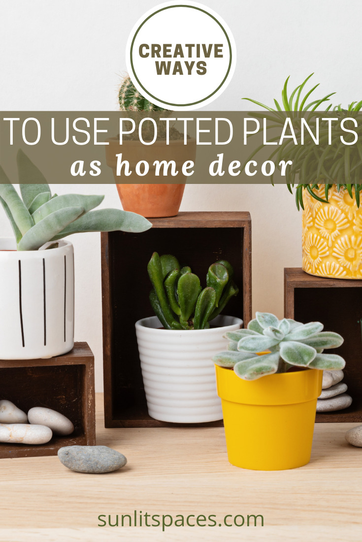 Sunlitspaces.com has the best ideas to bring unique charm to your home! Check out creative tips that will have your home looking exactly how you've always wanted it! If you're ready to take your current decor to the next level, try out these unique potted plant ideas!